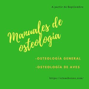manuales osteologia