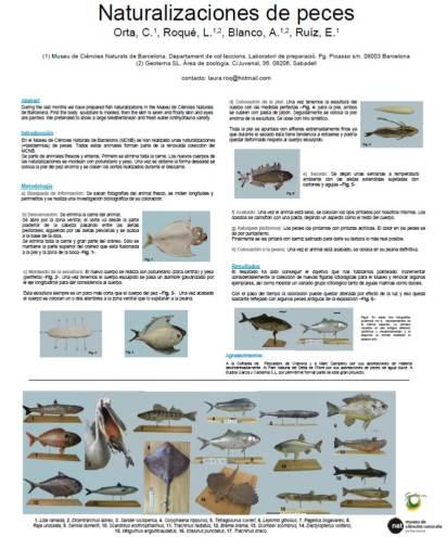 naturalizacion peces