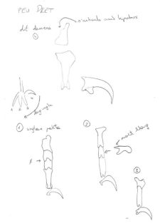 pata culebrera croquis ulnae bones montaje esqueletos
