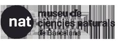 museu ciencie snaturals barcelona ulnae bones