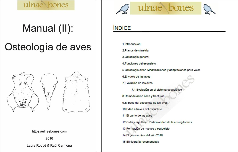 Asombroso Anatomía Y Fisiología Por Ross Y Wilson 11ª Edición ...
