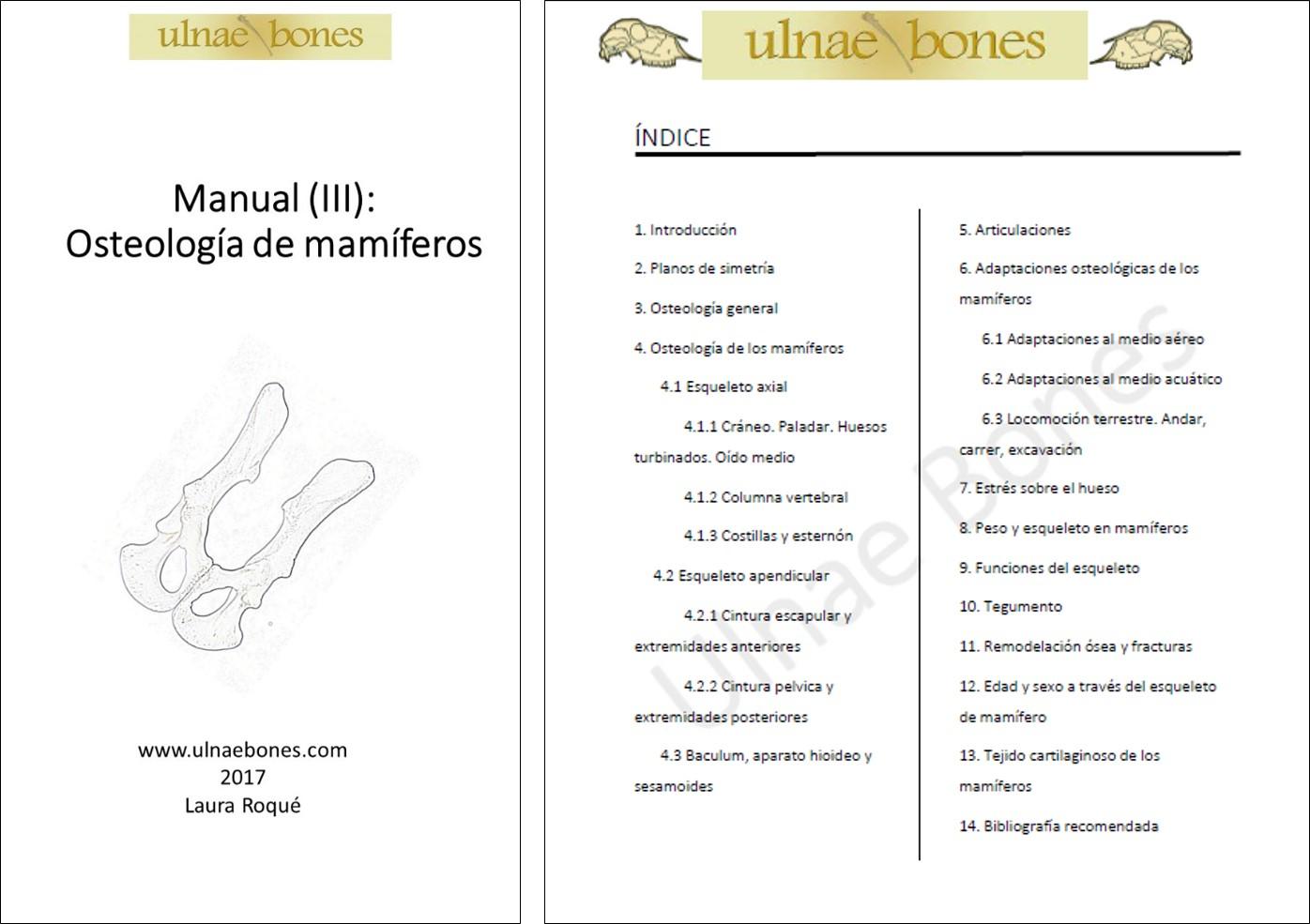 Atlas y Manuales « Ulnae Bones