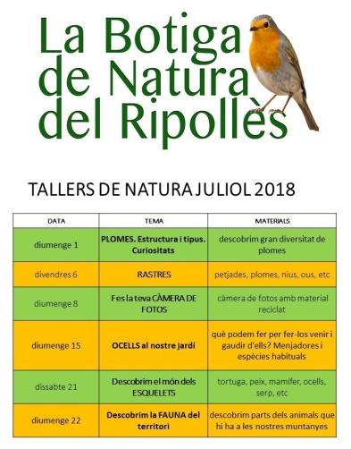 tallers natura juliol 2018 camprodon ulnae bones