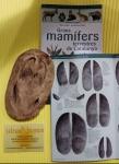 ulnae bones huellas mamiferos mamifers petjades repliques