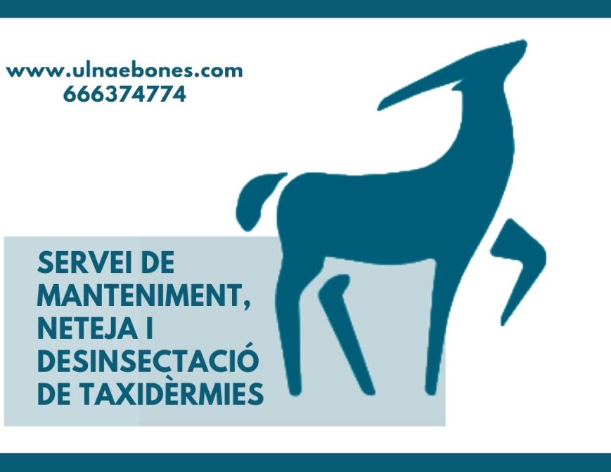 taxidermia ulnaebones servicio limpieza desinsectación arnas