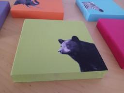 artesania ulnaebones animales colores madera