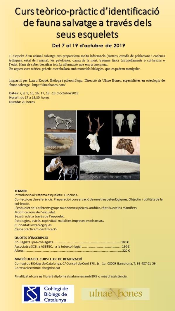 curs identificacio esquelets ulnaebones col·legi biolegs