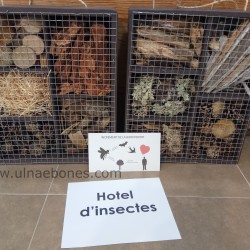 hotel_insectes_5_1