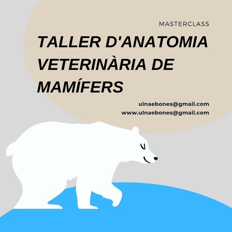 masterclass mamifers ulnaebones necropsia