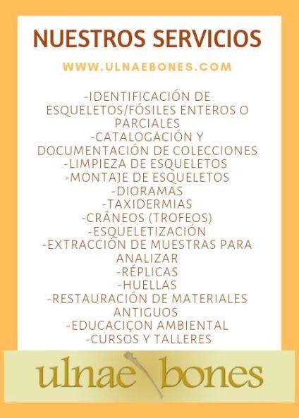 serveis ofrecemos servicios ulnaebones